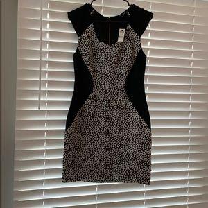 Black & White Express dress